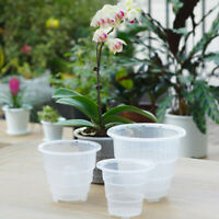 Mesh Pot Plastic Clear Orchid Flower Planter Container Home Gardening Decoration