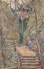 ISLE OF WIGHT :Shanklin Chine -LJ-'ARTIST' series