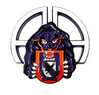 505th Parachute Infantry Regiment Challenge Coin