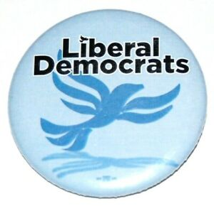 2020 LIBERAL DEMOCRATS JOE BIDEN bernie sanders campaign pin pinback button