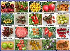Tomate Set 1: Tomatensamen samenfest 20 Arten Saatgut Saat aus Deutschland