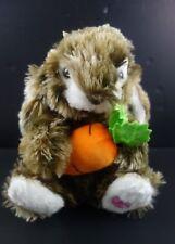 Dan Dee Collector Choice Rabbit Musical Animated Light Up Peter Cotton Tail Rap