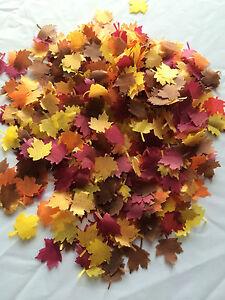 Biodegradable Leaf Confetti Autumn Leaves Fall - Individual Packs Handmade