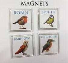 4 Kitchen Bird Magnets British Birds ~ Robin ~ Barn Owl ~ Kingfisher ~ Blue Tit
