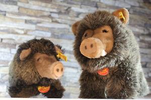 (EJM) Steiff 2x Wildschweine Wutzi + Bora PA55 Mass 73 unbespielt ca 24cm+13cm