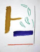 Alberto Rafols Casamada - Farblithografie - HANDSIGNIERT, NUMMERIERT