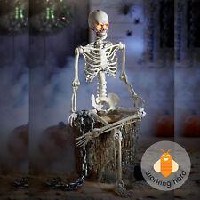 poseable skeleton 5 ft life size hanging halloween prop decoration led lit eyes