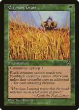 Magic the Gathering MTG 1x Elephant Grass x1 LP/LP+ x 1 Visions 16 x Available