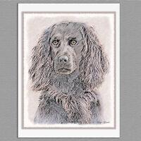 6 Boykin Spaniel Dog Blank Art Note Greeting Cards
