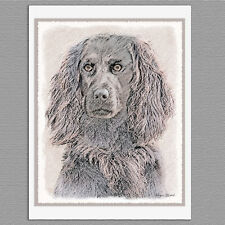 6 Boykin Spaniel Dog Blank Art Note Greeting Cards