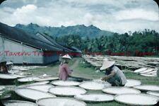 1956 Java Javanese Women drying rice 35mm Slide bj485