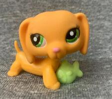 Authentic Littlest Pet Shop LPS Dachshund #2597 Yellow Orange Variant