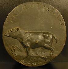Médaillon Circa 1800 Palaeotherium paléontologie paleontology medallion animal