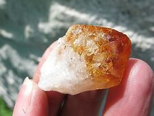 CITRINE CRYSTAL TOOTH POCKET SIZE UNPOLISHED  POINT 12g  3.5X2X1.5 CMS