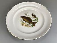 Porzellan Teller Speiseteller Fisch Schuppenkarpfen Winterling Porzellanteller