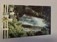 Vintage Postcard - Waterfall Scene - El Yunque Rain Forest P.R. Unposted #792