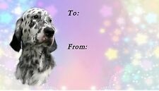 English Setter Dog Self Adhesive Gift Labels by Starprint
