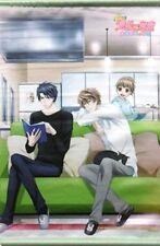 Sekai Ichi Hatsukoi Sekaiichi wall scroll poster tapestry anime promo Yokozawa