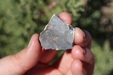 NWA 11182 Meteorite slice Lunar Meteorite 3.6 gram full slice MOON ROCK
