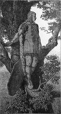 CELTE : SENTINELLE GAULOISE sur un ARBRE - Gravure du 19e siècle