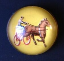 Vintage Intaglio Glass Dome Brass Horse Bridle Rosette Chariot Racing Brooch/Pin