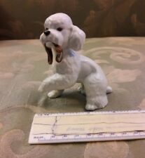 POODLE-WHITE-SITTING-WITH-PAW-UP-AND-A-TOY-IN-MOUTH-GOEBEL-WEST-GERMANY
