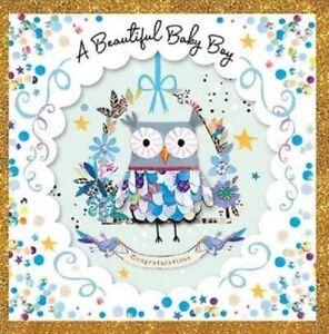 A Beautiful Baby Boy - Owl - Blue Trifold Birth Greeting Card