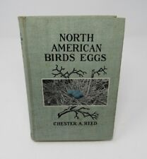 1904 North American Birds Eggs by Chester A. Reed Illustrated Bird Watching NICE