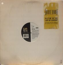 "LOUIE LOUIE SITTIN'  IN THE LAP OF LUXURY 12"" SINGLE 5 MIXES 1990 NM!! PETTIBONE"