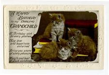 1920s Vintage Antique Cat Kitten British photo postcard