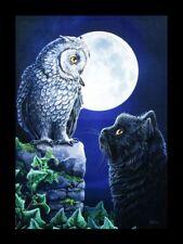 Lienzo Grande Con Gato & Búho - Purrfect Wisdom - Lisa Parker Decoración De