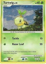 POKEMON PROMO CARD: TURTWIG LV10 - 103/130 - ALTERNATE  HOLO
