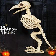 Skeleton Raven Plastic Animal Skeleton Bones for Horror Halloween Decoration JL