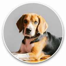 2 x Vinyl Stickers 30cm - Cute Beagle Dog Puppy Portrait  #44756