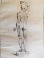 Grand Dessin mine de plomb 1850 anatomie nu homme muscle