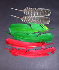 Dyed Turkey feathers 3 pairs and colors