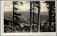 NEUHAUS Rennweg Thüringen DDR 1954 Göritzgrund Partie alte Postkarte