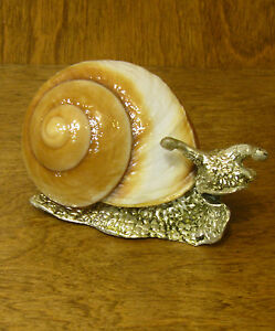 """Kubla Crafts Shell Sculpture #KC1155 SNAIL, NEW/Box from Retail Store, 2.5""""x4"""""""
