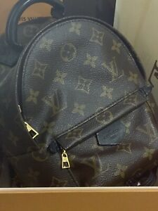 Louis Vuitton  PALM SPRINGS MINI Authentic With Paperwork