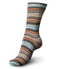 Regia Sock yarn Design Line Arne & Carlos superwash 4ply 100g #3655