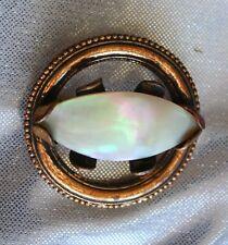 Shell Brooch 19th century Elegant Antique Victorian Iridescent