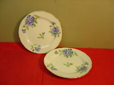 Rossetti China Hand Painted MEADOW BELLE Two Bread and Butter Plates