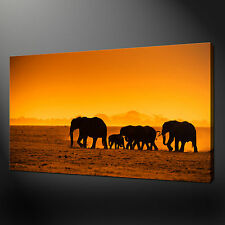 """AFRICAN ELEPHANTS SUNSET CANVAS WALL ART PICTURES PRINTS 20""""x16"""" FREE UK P&P"""
