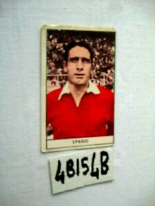 SPANIO ANGELO ROMA FIG CARTONATA   ANNO 1964-65   (4BIS4B)