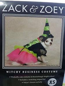 ZACK & ZOEY Small Dog Puppy Birthday Dress Witch Halloween Costume Size XS