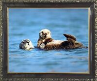 Sea Otter & Pup Baby Ocean Animal Wall Decor Art Print Framed Picture 20x24