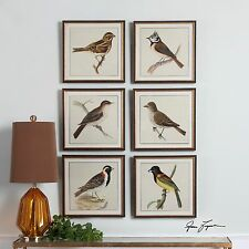 SIX RICH COLOR BIRDS PRINTS PICTURES AGED FRAMES BROWN WASH PRINTS ARE RAISED