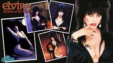 Hollywood Celebrity Art Photo Poster:  ELVIRA |21 inch by 36 inch| 02 80'S