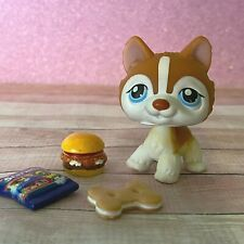 100% AUTHENTIC Littlest Pet Shop LPS #341 Brown White Husky w Accessories