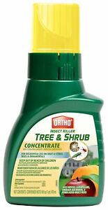 Ortho Insect Killer Tree & Shrub Concentrate